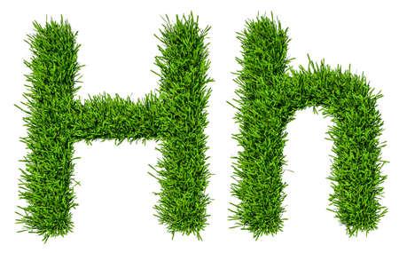 Letter of grass alphabet. 3d illustration