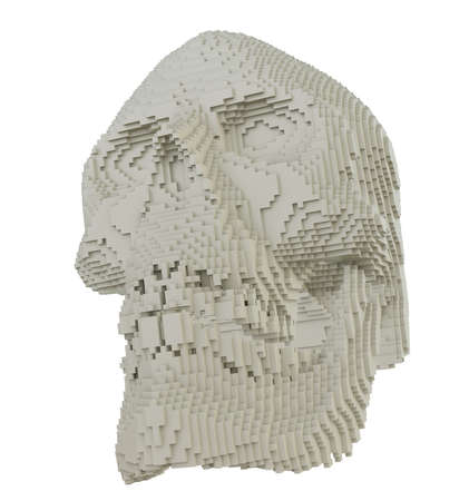 3d printed skull isolated