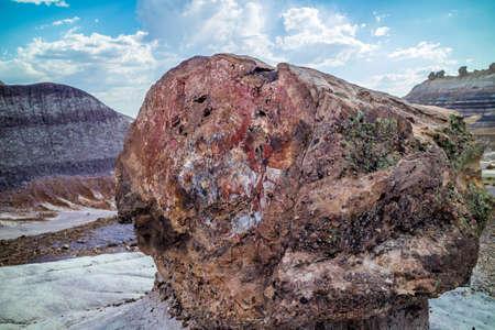 Petrified rocks in Petrified Forest National Park, Arizona