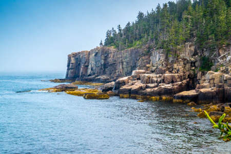 The famous Otter Cliff in Acadia National Park, Maine Stok Fotoğraf