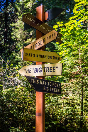 Redwood National Park, California, USA - October 1, 2017: A signage post for the use of more tourist attractions Editoriali