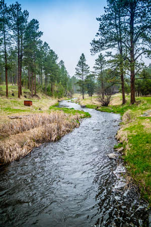 The French Creek in Custer State Park, South Dakota Stock Photo