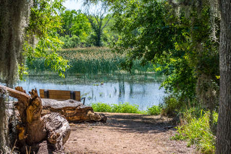 The Willow Lake in Santa Ana NWR, Texas 写真素材