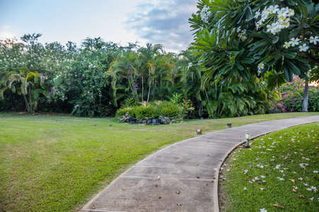 An overlooking of well maintained plant and trees in Maui, Hawaii 免版税图像