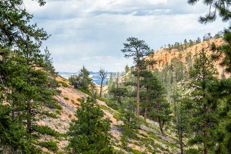Red Rocks Hoodoos in Bryce Point at Bryce Canyon National Park, Utah 版權商用圖片 - 168414675
