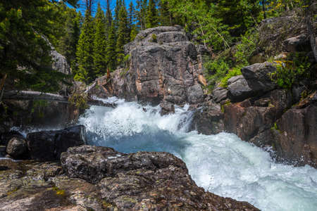 A narrow stream of water in Custer National Forest, Montana