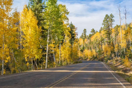 A long way down the road going to Grand Canyon National Park, Arizona 版權商用圖片