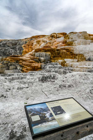 Yellowstone NP, WY, USA - August 8, 2020: The Living Palette of Color