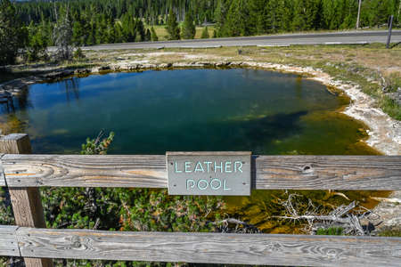 Yellowstone NP, WY, USA - August 7, 2020: The Leather Pool 新聞圖片