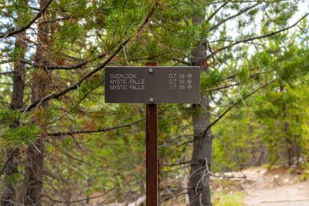 Yellowstone NP, WY, USA - August 1, 2020: The different kinds of trials going to its scenic destination
