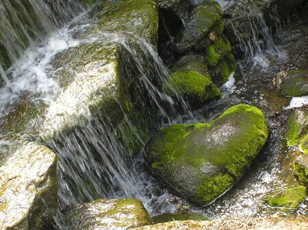 a stone lies under water, a heart reminds