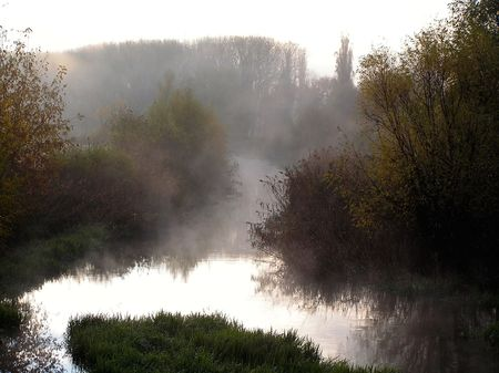 auroral: Dense fog in the morning above the river  Stock Photo