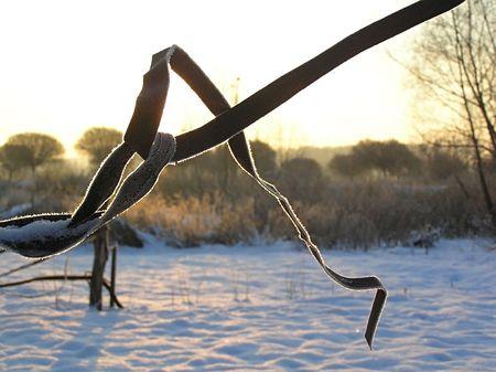 El alambre de girar sobre un fondo de un paisaje de invierno Foto de archivo