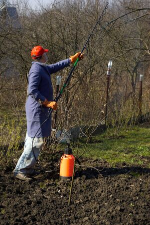 The man the gardener processes trees chemicals
