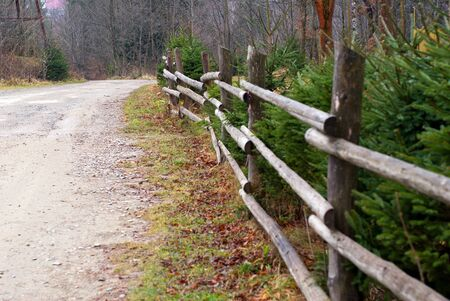 wooden fence in forest near road