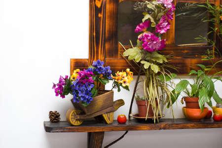 still life from different flowerpots on shelf