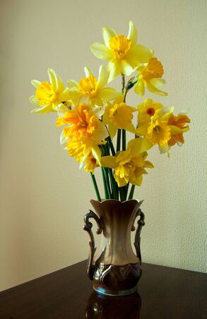 bouquet yellow narcissus on background Stock Photo