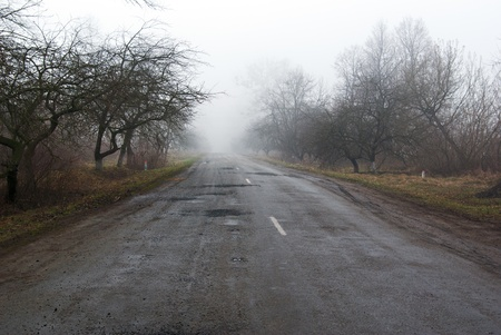 road between trees go to the fog Stock Photo