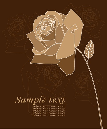 florist:  Illustration postcards depicting roses and text.  Illustration