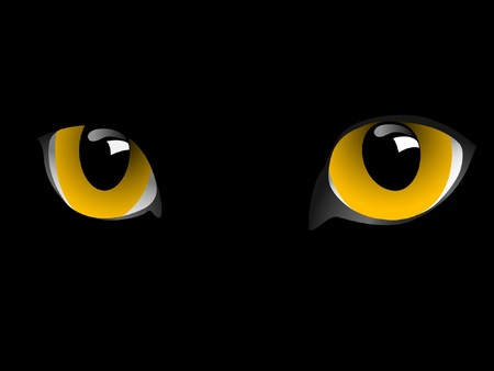 Cat eyes in the dark.