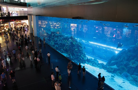 DUBAI, UNITED ARAB EMIRATES - 21. März: Blick auf das Aquarium in Dubai Mall Einkaufszentrum in Dubai, am 21. März 2011. Die größte Indoor-Aquarium der Welt. Die Höhe eines dreistöckigen Hauses und eine Länge von 50 Metern ist dieses Aquarium Heimat thousan