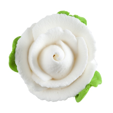 jelly head: Sweet white rose flower isolated on white background. Stock Photo