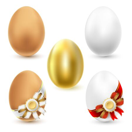 medallion: Chicken eggs isolated on white background  Vector