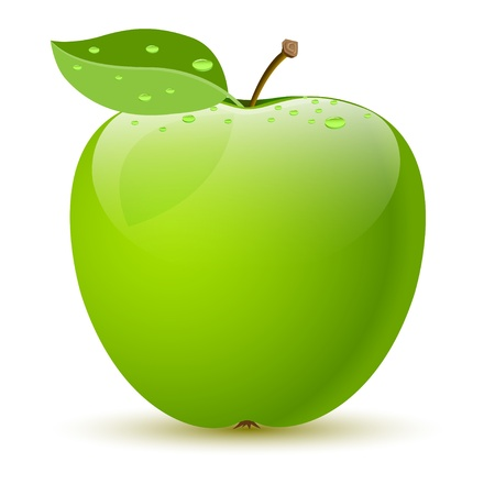 Illustration of a green apple on white background. Vector.