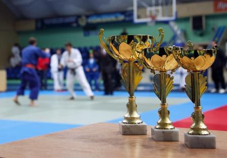 judo: Copa de Oro contra el fondo de la sala de deportes. Juvenil de Judo de la competencia.