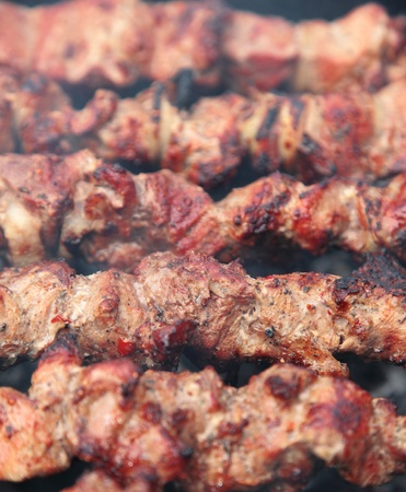 shishkabab: Barbecue with grilled meat on grill. Stock Photo