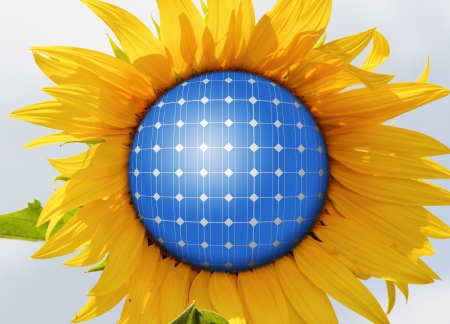 panels: Sunflowers with solar panels in the sky