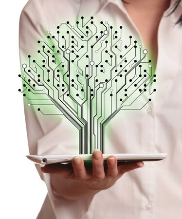 Abstract circuit board pattern in the shape of the tree in hand women. Stock Photo - 18765348