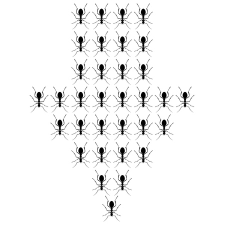 crawling: Illustration of Ants in the form of arrows Isolated on a White Background Illustration