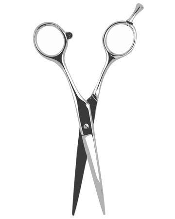 hair cut: Scissors isolated on a white background  Vector