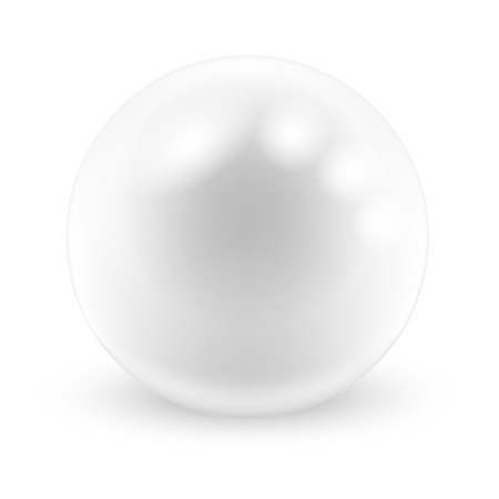 pearl: Vector Pearl on white background. Illustration. Illustration