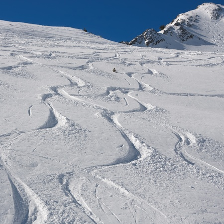 ski and snowboard tracks on powder snow photo