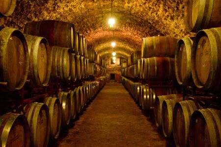 Wine barrels in wine-vaults in order. Wine bottle and barrels in winery cellar Фото со стока