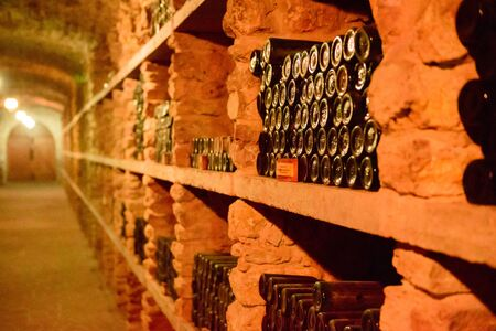Red wine bottles in a cellar. Storing bottles of ancient red wine in the basement