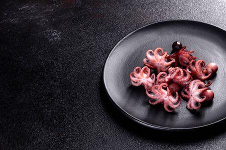 Seafood Baby octopus salad in a black plate. Mediterranean gourmet food