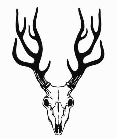 simple deer skull with black horns Stock Vector - 124559085