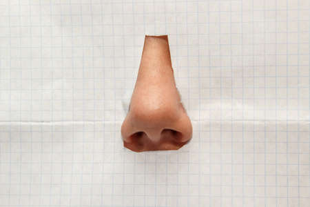 nose close up: the nose isolated on a white background checkered Stock Photo