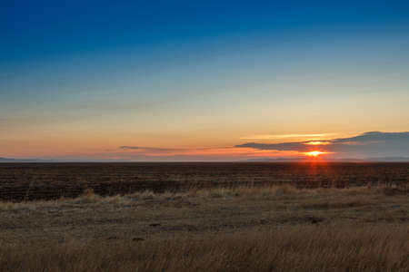 veldt: Sunrise in the steppes. Blue sky, yellow grass. Stock Photo
