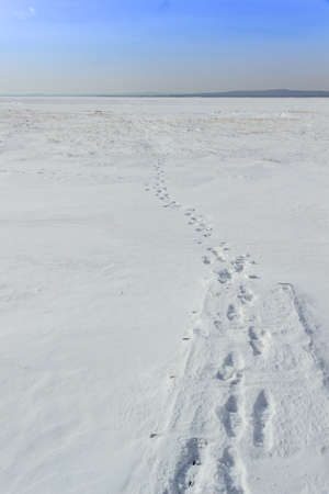 arctic waters: Footprints in the snow Stock Photo