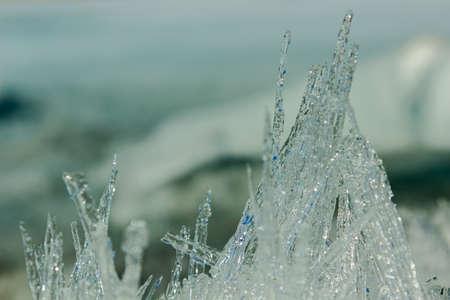 grass close up: needles of ice Stock Photo
