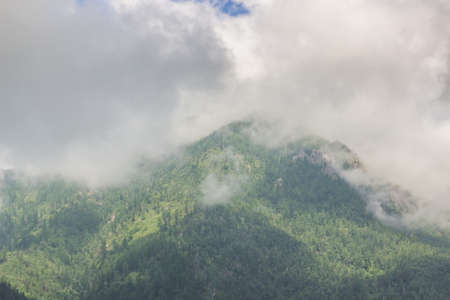 Clouds in the mountains covered with the green wood. Standard-Bild