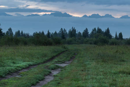 The road through the meadow at sunrise in the mountains. Standard-Bild