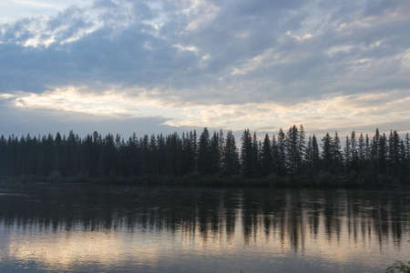 The wood which is reflected in water of the current river.