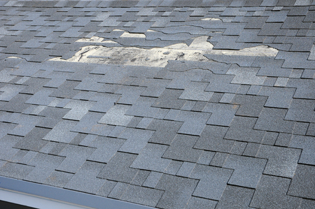 A close up view of shingles a roof damage. Roof Shingles - Roofing.