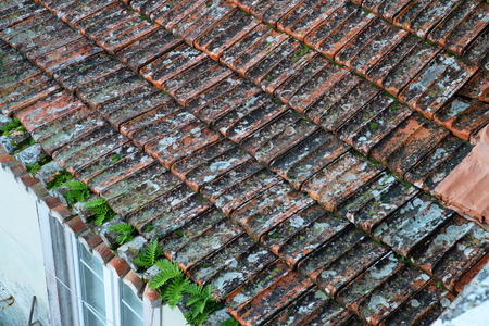 Old red ceramic tile on the roof with germinating plants and in need of repair.