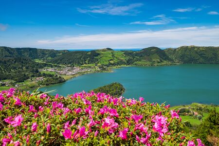 Beautiful view of pink flowers to background lake. Azores, Sao Miguel, Portugal